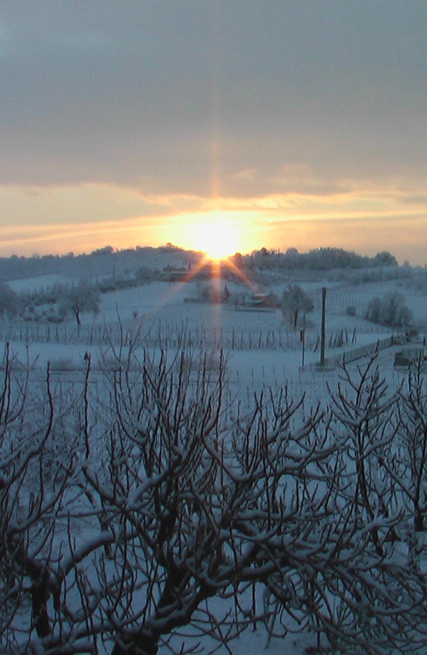 Paracelso: la malattia come l'inverno