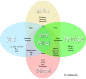 BioPsychoSocialSpiritual model for a Whole Wellness