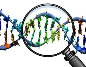 Malattie genetiche: errori della Natura?